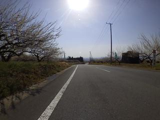 SHIM0084.JPG